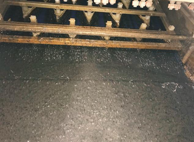 Seihband Vorentwässerung ARA Buchs